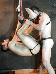 Hogtied twink gets butt ravaged by his old master, Added: 2016-08-06 by Bound Area